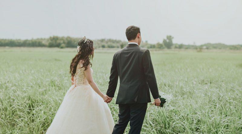 namioty weselne